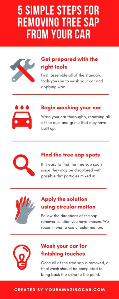 Wash and clean the auto and remove tree sap with this five simple steps