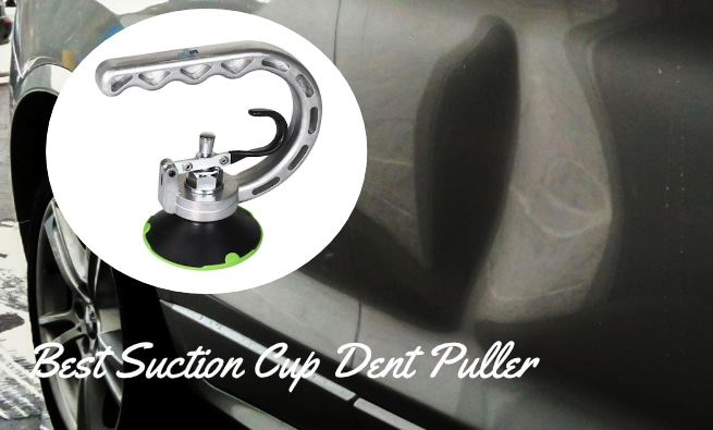 Suction Cup Reviews